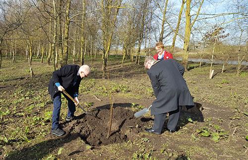 Planting_Willow_Cutting_Arboretum